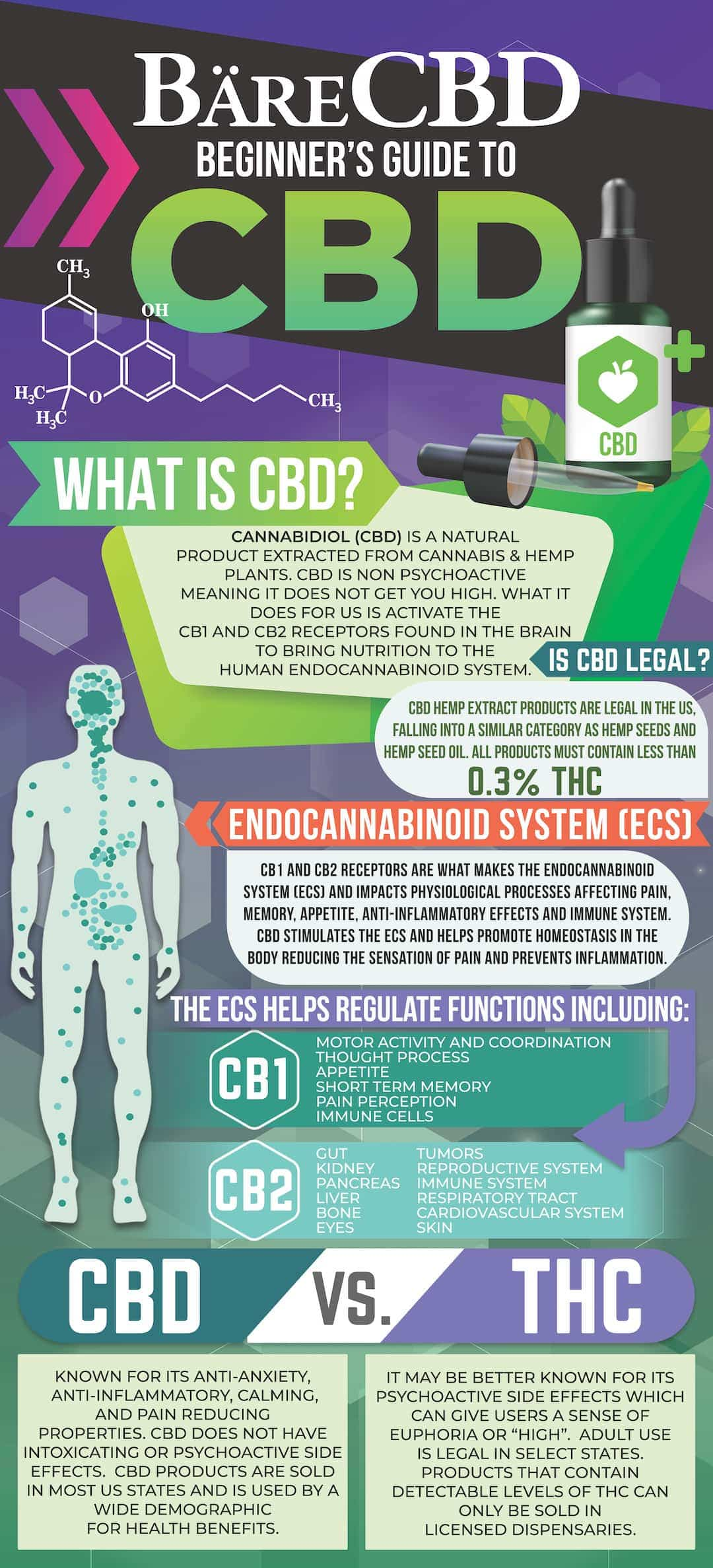 Beginner's Guide to CBD - Infographic | Bare CBD